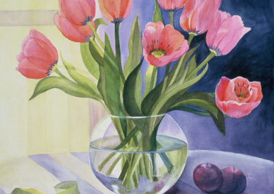 Tulips With Two Plums